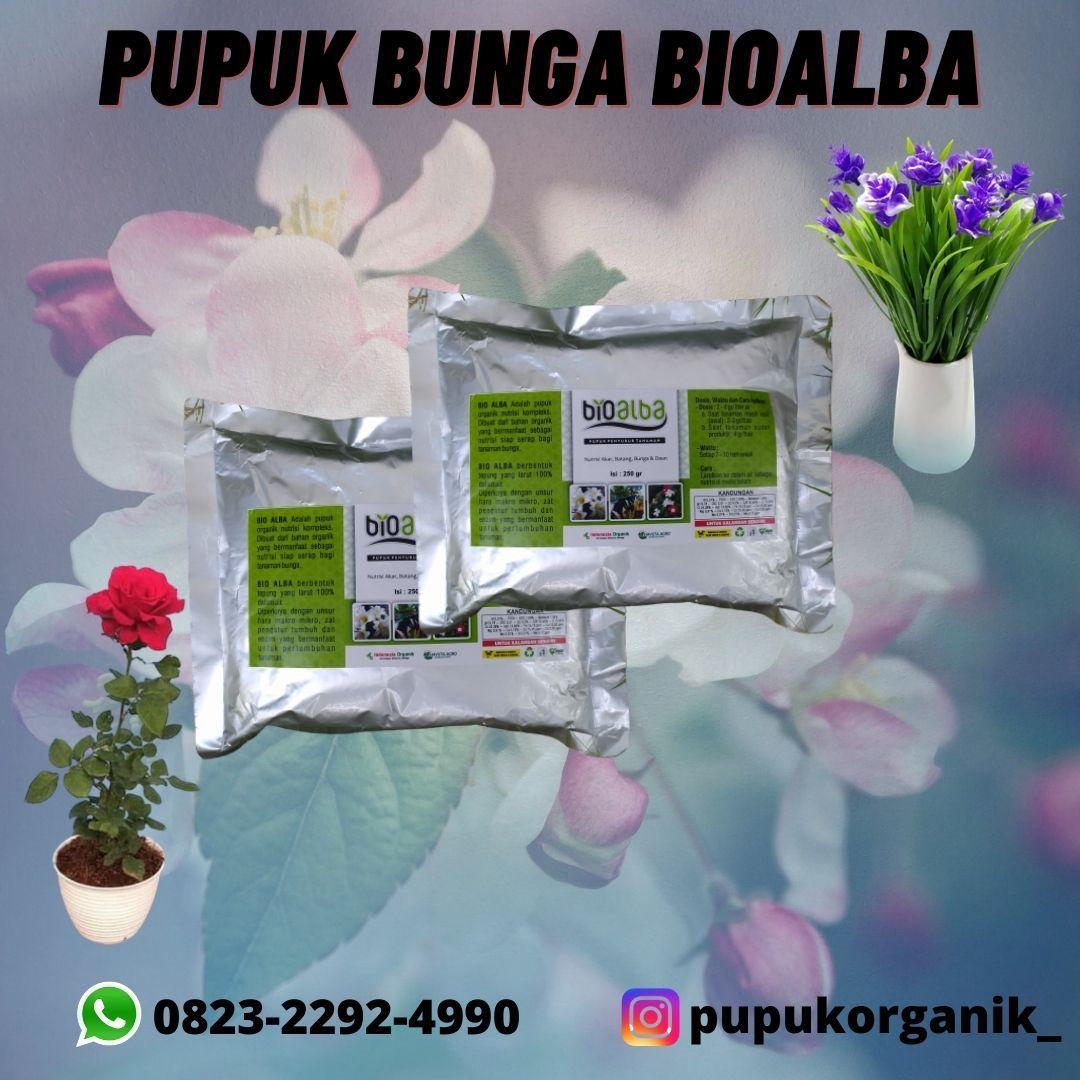 Termurah 082322924990 Beli Pupuk Yang Bagus Untuk Tanaman Bunga Sukadana Agen Pupuk Yang Baik Bunga Tanaman Mawar