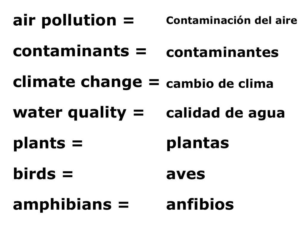 Ecology Diagram Key Terms Bilingual Worksheets Spanish Worksheets Spanish Kids [ 768 x 1024 Pixel ]