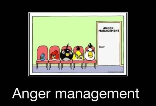 Angry Birds Going To Anger Management Haha I Found That Funny Inspirational Words Funny Quotes Funny