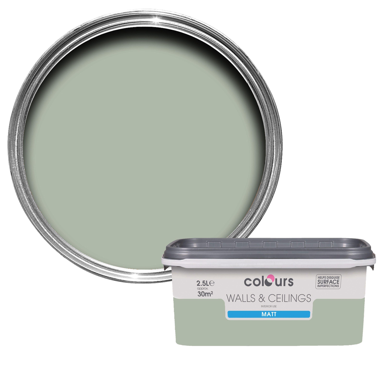 Terrific Colours Cut Grass Matt Emulsion Paint 2 5L Departments Home Interior And Landscaping Spoatsignezvosmurscom