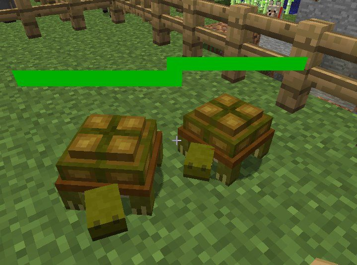 What Do Turtles Eat In Minecraft