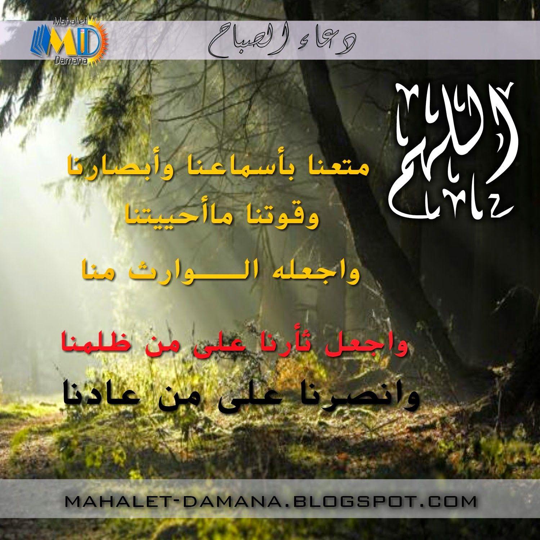 Mahalet Damana دعاء الصباح من محلة دمنة Post Blog Posts Lano