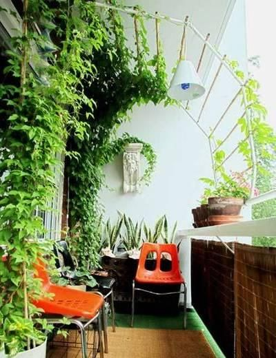 natural health blog- mother earth news - healthy living, herbal ... - Patio Privacy Ideas For Apartment