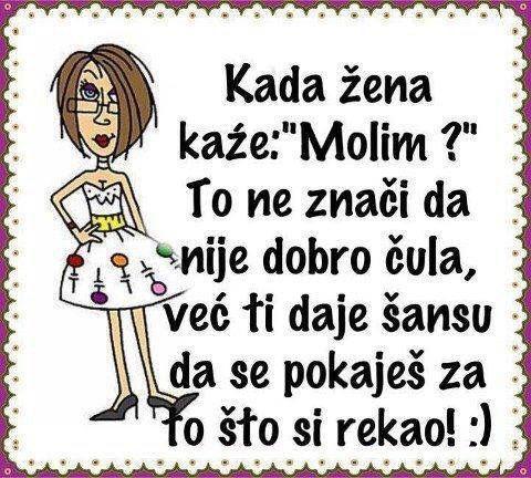 Pin By Mirela Petrovic On Aforizmi Pjesme Izreke Citati Haha Funny Beast Quotes Funny Pictures