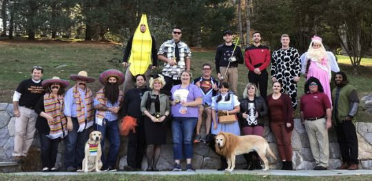 canine company employees canines included showing off their halloween spirit yesterday