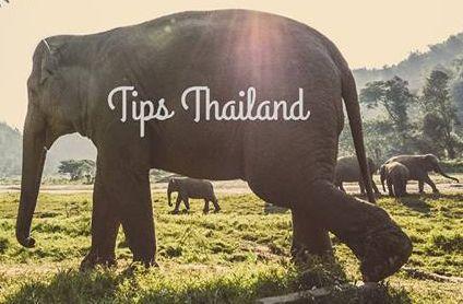 Op zoek naar inspiratie? Unieke tips die niet in de reisgidsen staan? Tips Thailand gaat verder en laat je het echte Thailand zien. Ontdek het zelf!