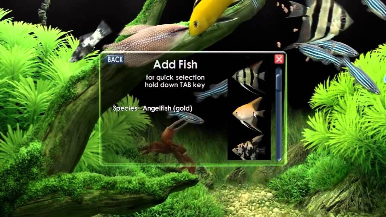 Ghim c a goandgodh tr n - Dream aquarium virtual fishtank 1 ...
