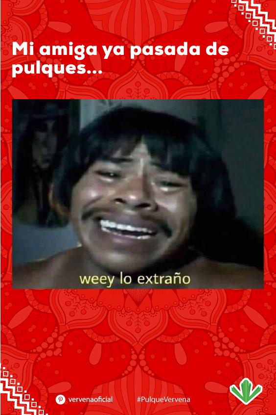 Pin De Jose Perez En 70nteros Amigos Borrachos Memes Divertidos Memes