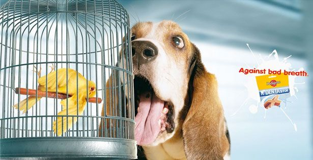 Ineffective visual/verbal integration- I think this ad represents ineffective integration. It took me a while to find/ realize what the brand did and after I found it I had to put the picture together. Once I realized the dogs breath killed the bird, I thought it was gross how there was a dead bird.