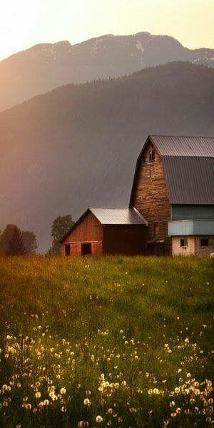 Barns and mountains