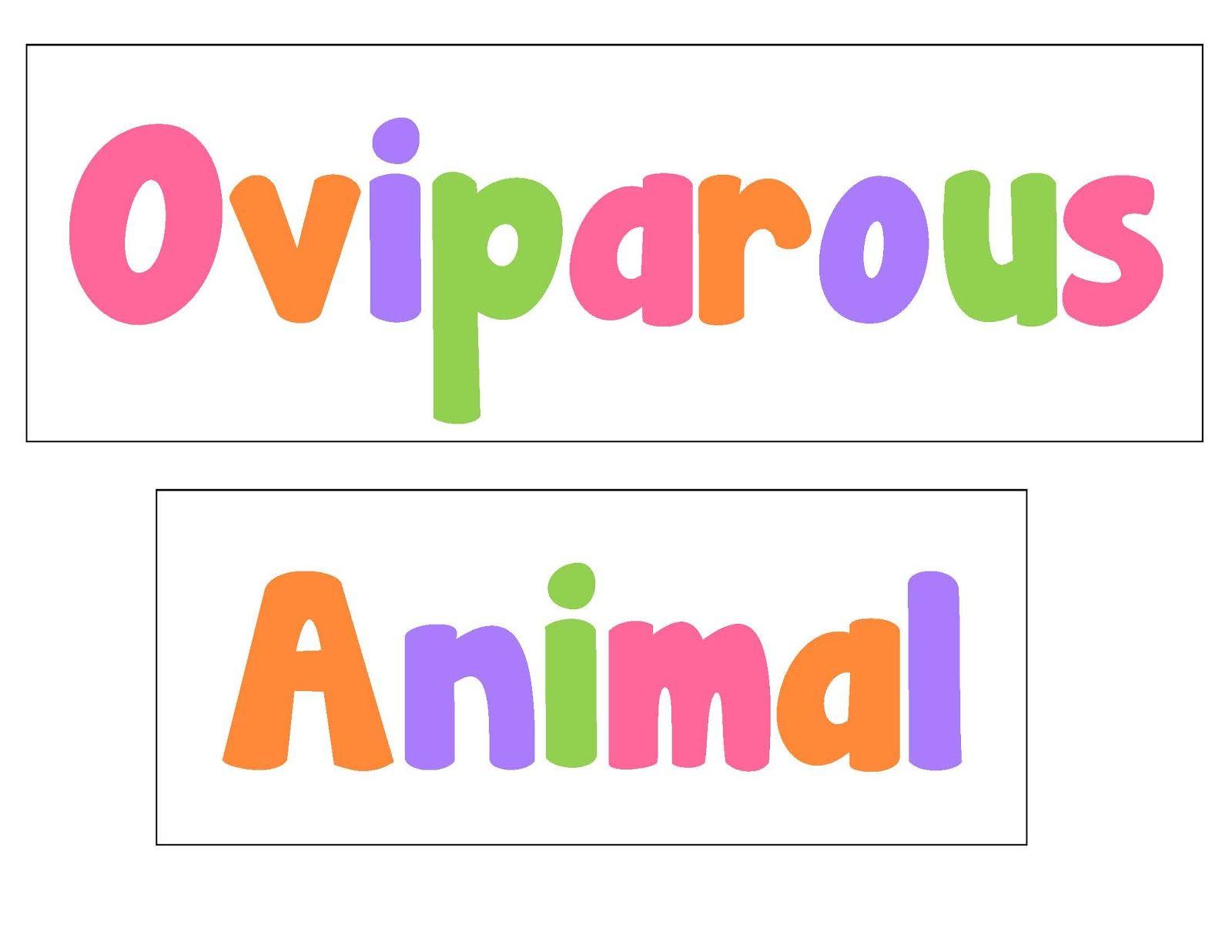 Oviparous Animals Freebie Preschool