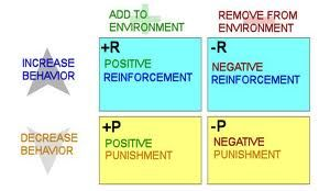 Consequences Operant Conditioning Positivity