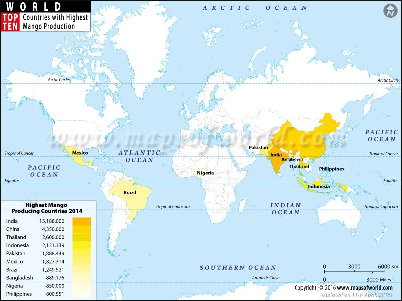 Mango- the king of all fruits No matter how old the mango tree is - best of world map with brazil highlighted