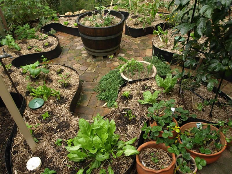 Herb Garden Design Examples best 25+ permaculture garden ideas on pinterest | permaculture