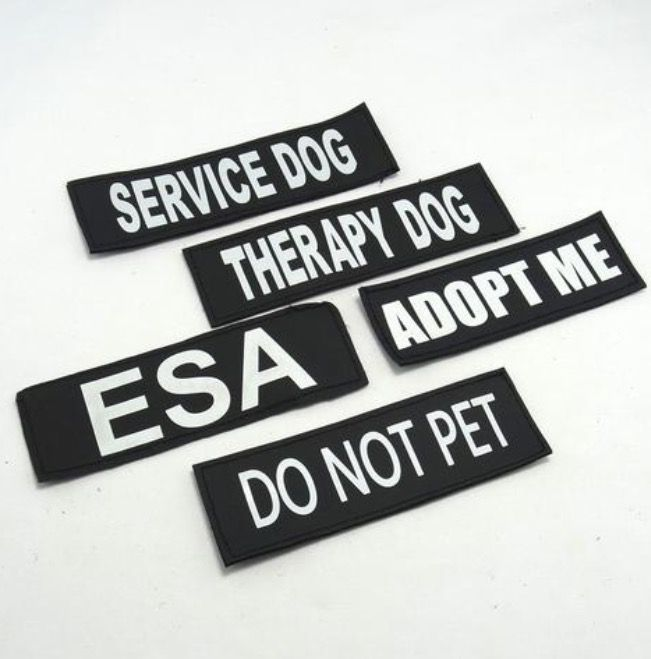 Velcro Labels For Dog Collar Or Harness Therapy Dogs Sporting Dogs