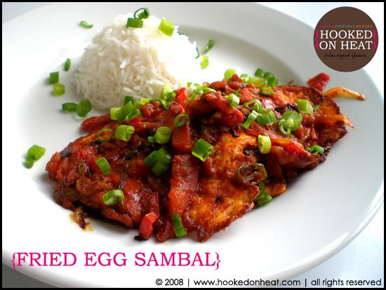 A never ending learning process fried egg sambal httpwww a never ending learning process fried egg sambal httpwww sambal recipeegg recipesindian forumfinder Choice Image