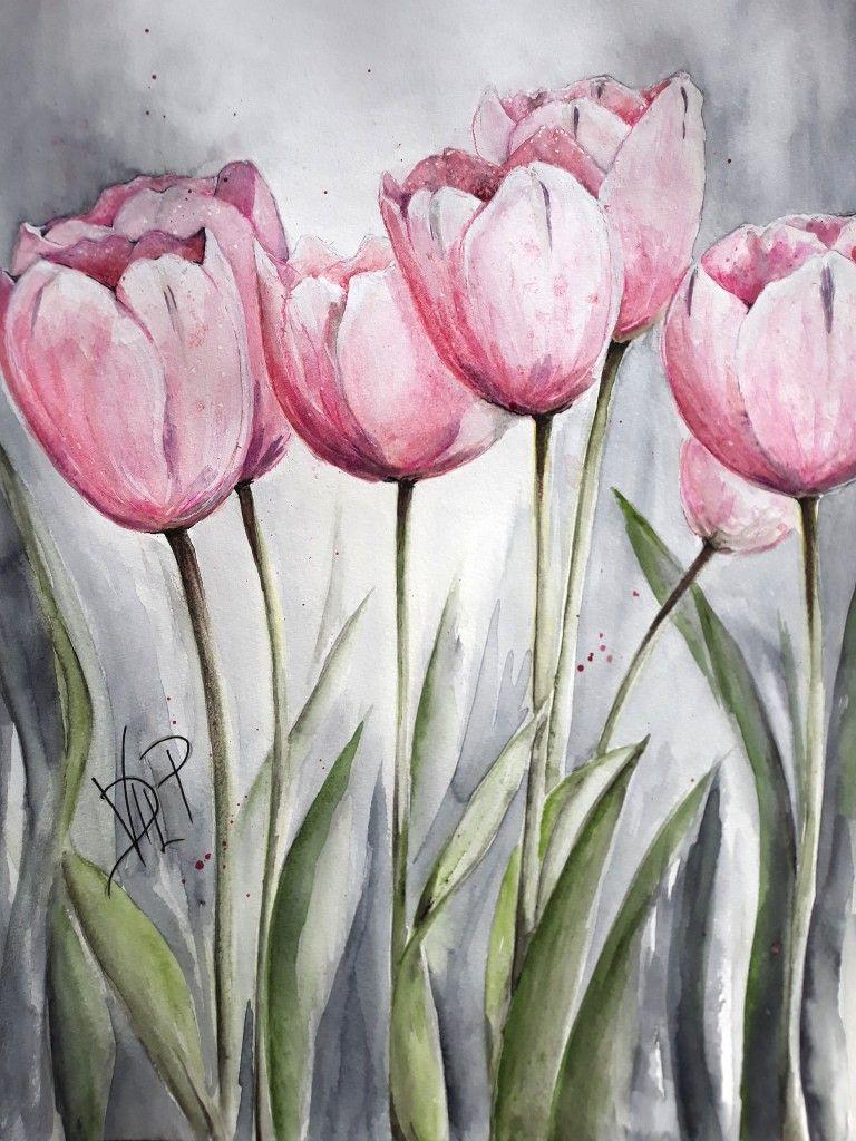 Tulipes Roses Fleurs Paints