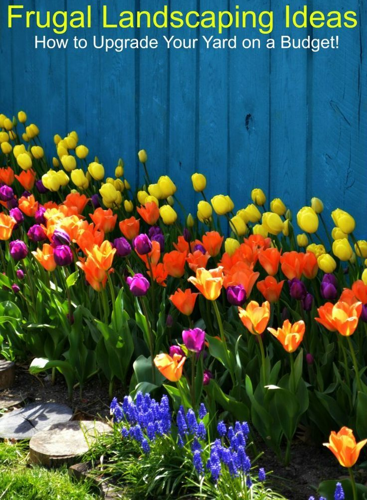 Frugal Landscaping Ideas  How to Upgrade Your Yard on a Budget. Landscaping Ideas  How to Upgrade Your Yard on a Budget