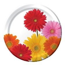 Gerbera Daisy Paper Plates & Gerber Daisy Party Supplies at Set To ...