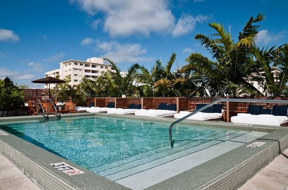 Catalina Hotel Beach Club With Free Wifi In Miami Fl