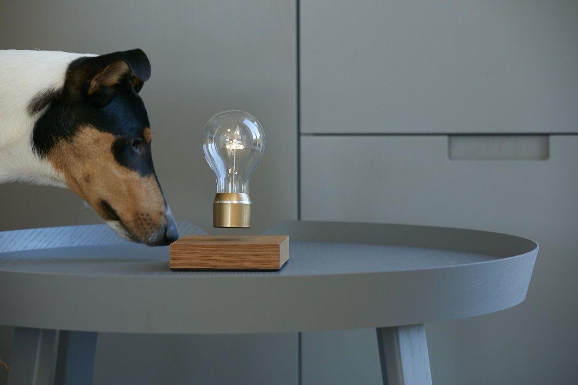 Flyte The Levitating Light Bulb Lamp Light Bulb Bulb