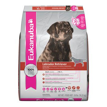 Eukanuba Labrador Retriever Dog Food