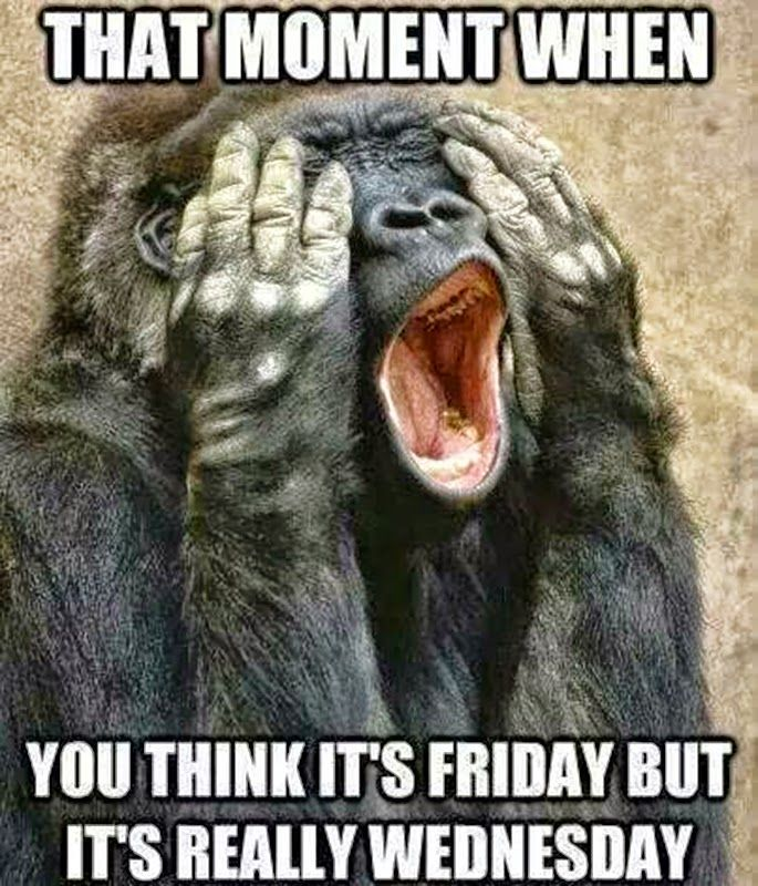 November 5 2014 Wednesday Memes Monkeys Funny Wednesday Humor