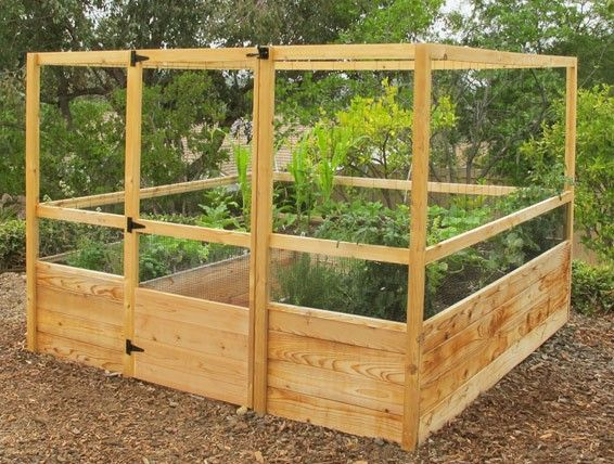Deer Proof Cedar Complete Raised Garden Bed Kit - 8\' x 8\' x 20 ...