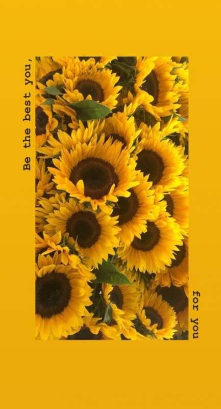 Pin By Lilly Gomez On Yellow Aesthetic Sunflower Iphone