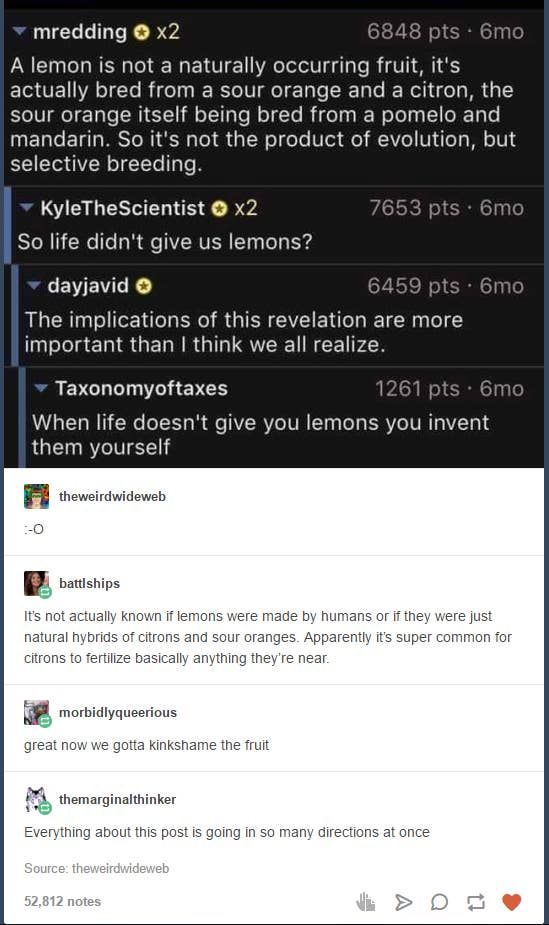 Latest Funny Imagenes 18 Tumblr Responses That Are Just Funny AF 18 Tumblr Responses That Are Just Funny AF 3