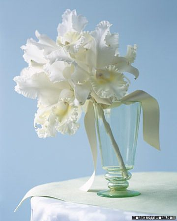 The drama of white Cattleya orchids is unmatched by perhaps any other flower. Clustered together, their gently ruffled petals on a wave. A slender, wired handle wrapped in ivory satin ribbon makes an abundance of the creamy blooms seem all the more spectacular.