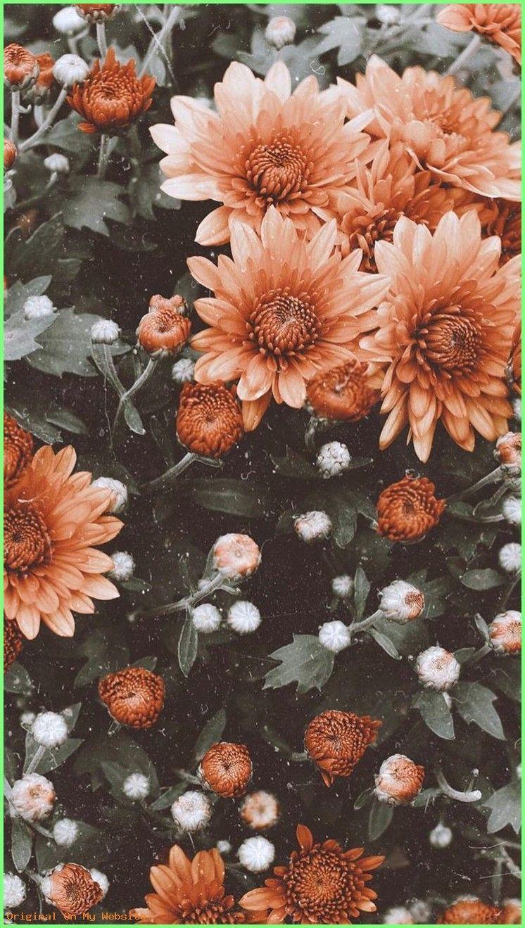 Wallpaper Backgrounds Vintage Wallpaper Flowers Vintage Background