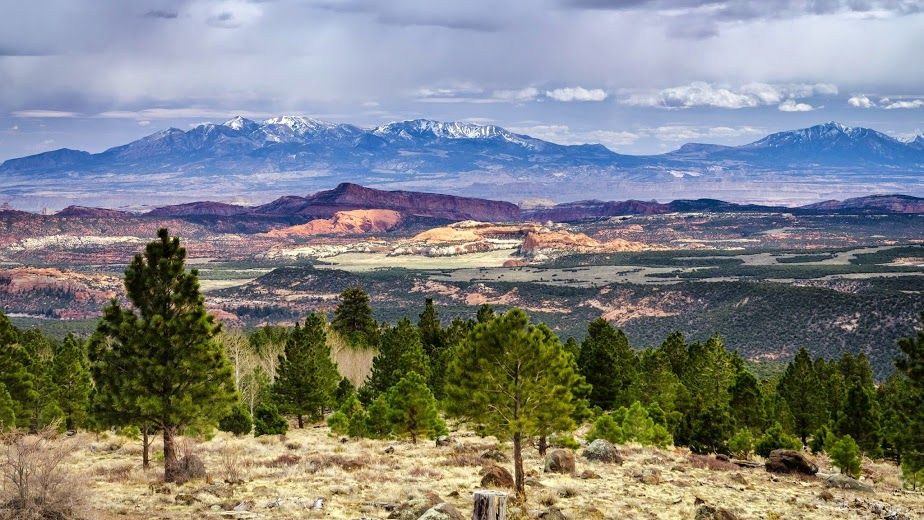Dixie National Forest Usa The Dixie National Forest With Headquarters In Cedar City Utah Occupies Almost Two Million Zuid Amerika Verenigde Staten Amerika