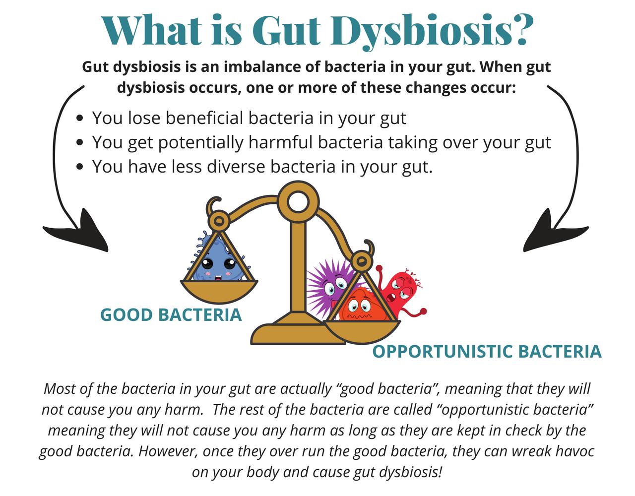 Dysbiosis chronic fatigue