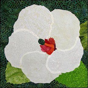 Hibiscus unpainted