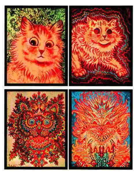 картинка шизофренических котов