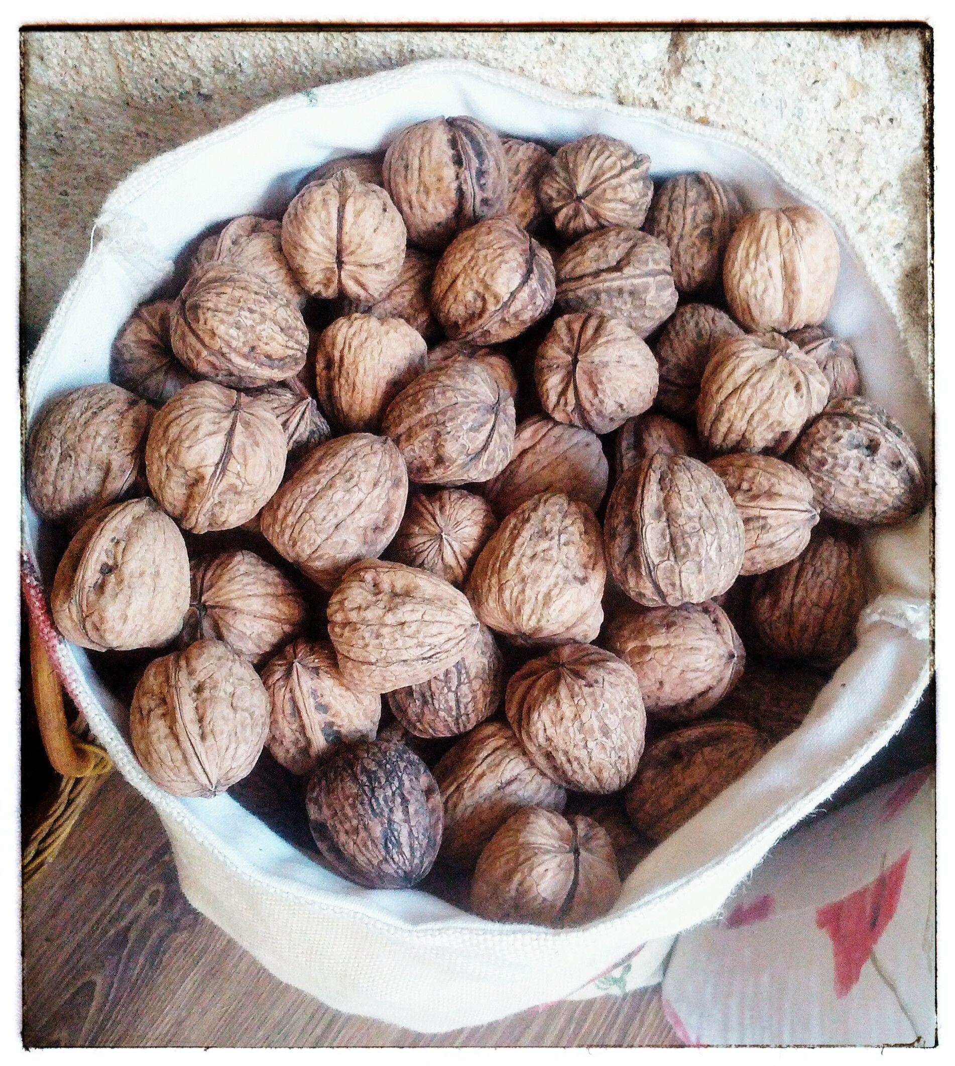 Imagen de nuestras nueces ibéricas, disponibles en nuestras tiendas Bomboneka.