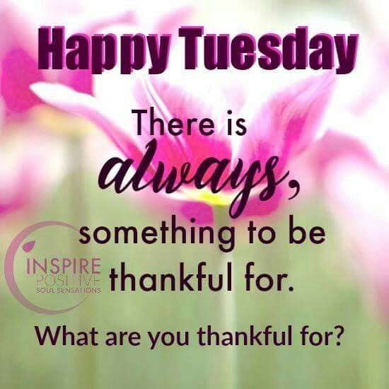 Thankful Tuesday Good Morning Tuesday Tuesday Quotes Good Morning Quotes  Happy Tuesday Tuesday Blessings Happy Tuesday
