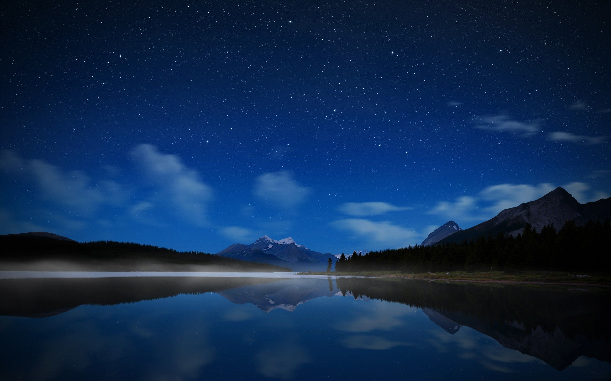 Download wallpaper 1920x1080 starry sky, night, trees