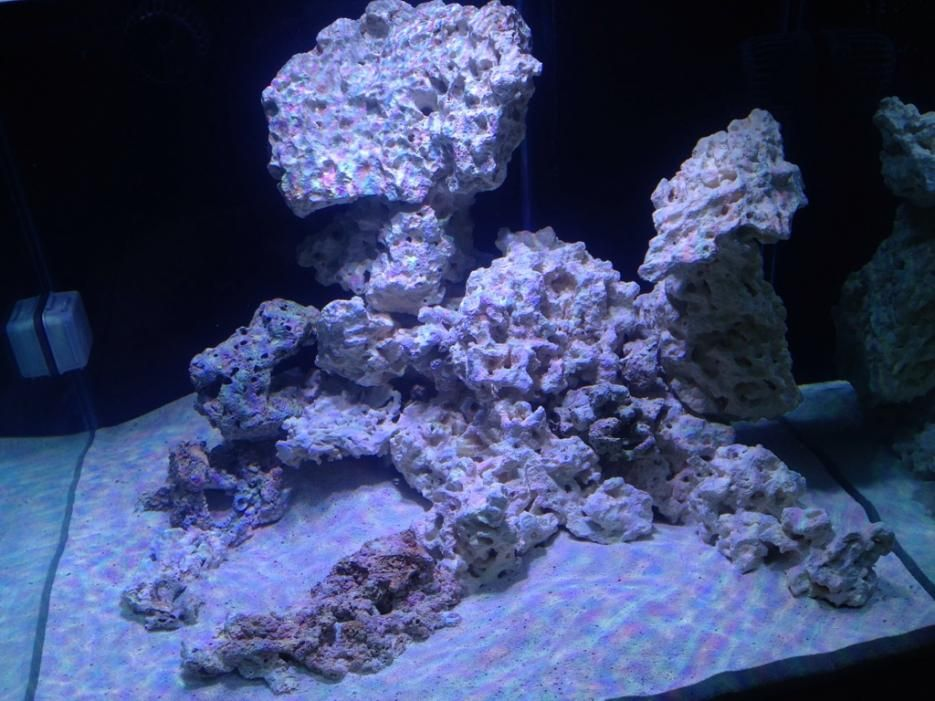 93 Gal Cube Rock Scape Ideas Rock Scaping Scape Saltwater Tank