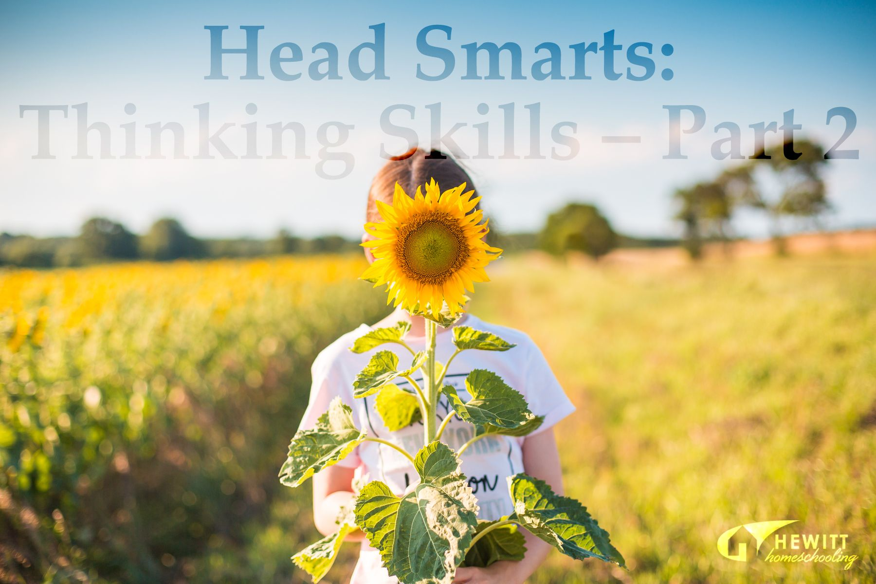 Pin On Our Homeschooling Tips Amp Ideas