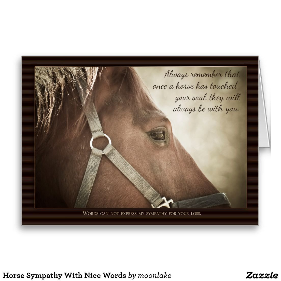 Horse Sympathy With Nice Words Card Zazzlecom Quotable Horses