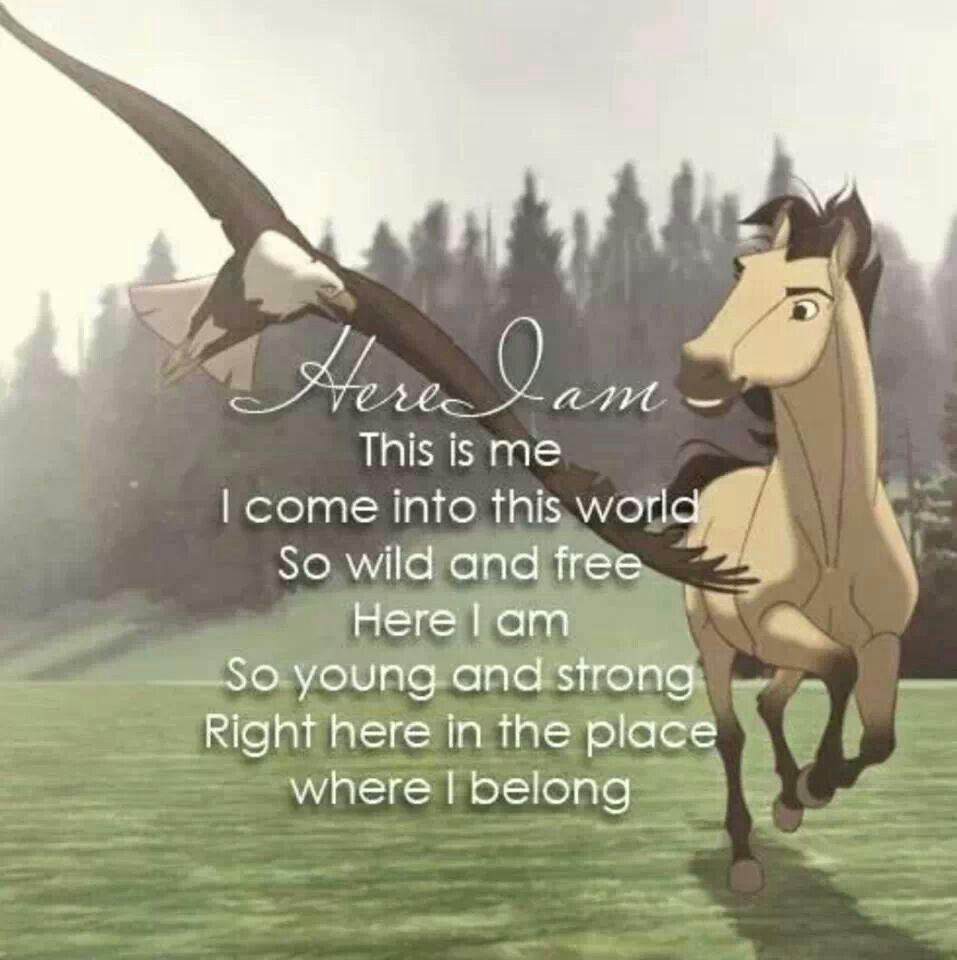 Here i am horses pinterest