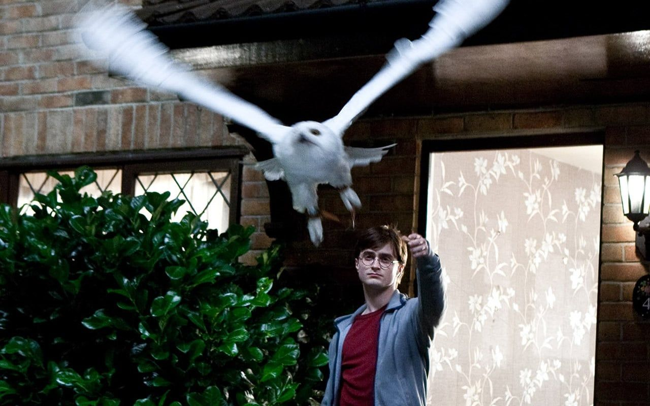 Harry Potter Es A Halal Ereklyei 1 Resz 2010 Teljes Film Magyarul Online Hd Hu Mozi Harry Pott Harry Potter Facts Harry Potter Trivia Quiz Harry Potter