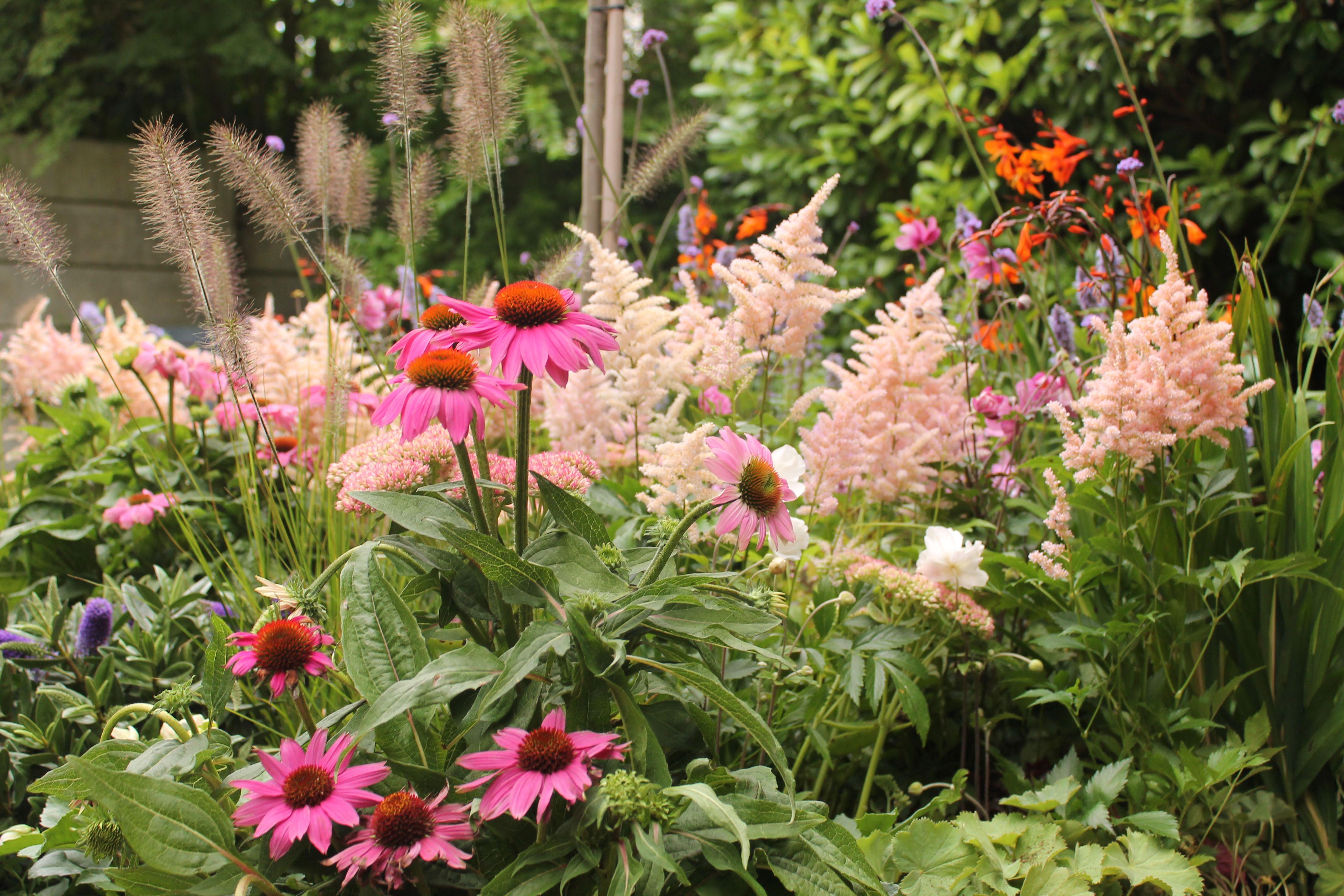 border vol bloemen eigen huis tuin tuin bloem