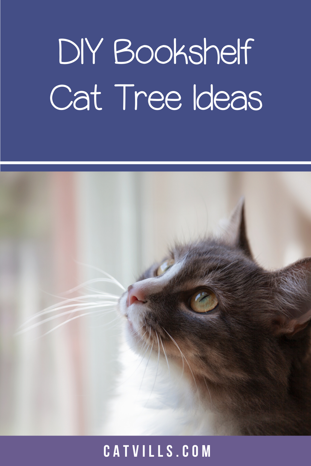 6 Epic Bookshelf Cat Trees To Buy Or Diy Catvills In 2020 Cats Introducing A New Cat Pregnant Cat