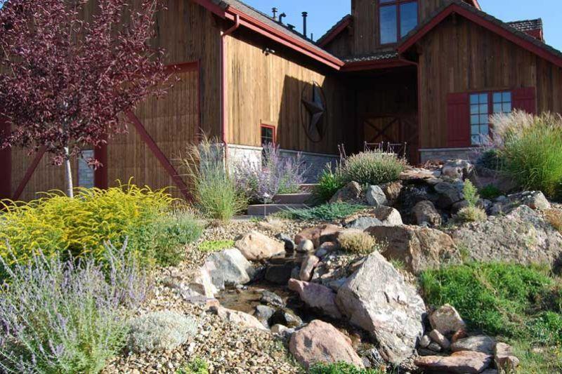 xeriscape colorado yard residential