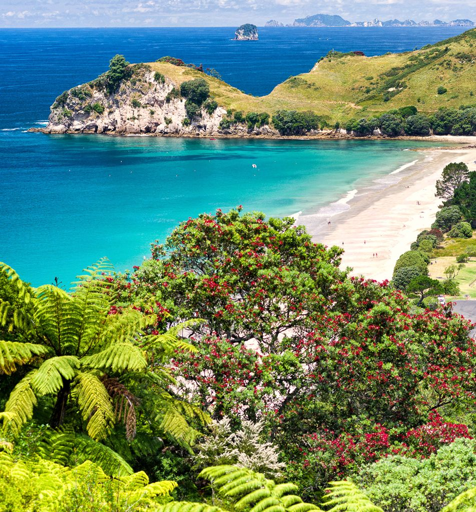 Beautiful Hahei Beach, Coromandel Peninsula, New Zealand.
