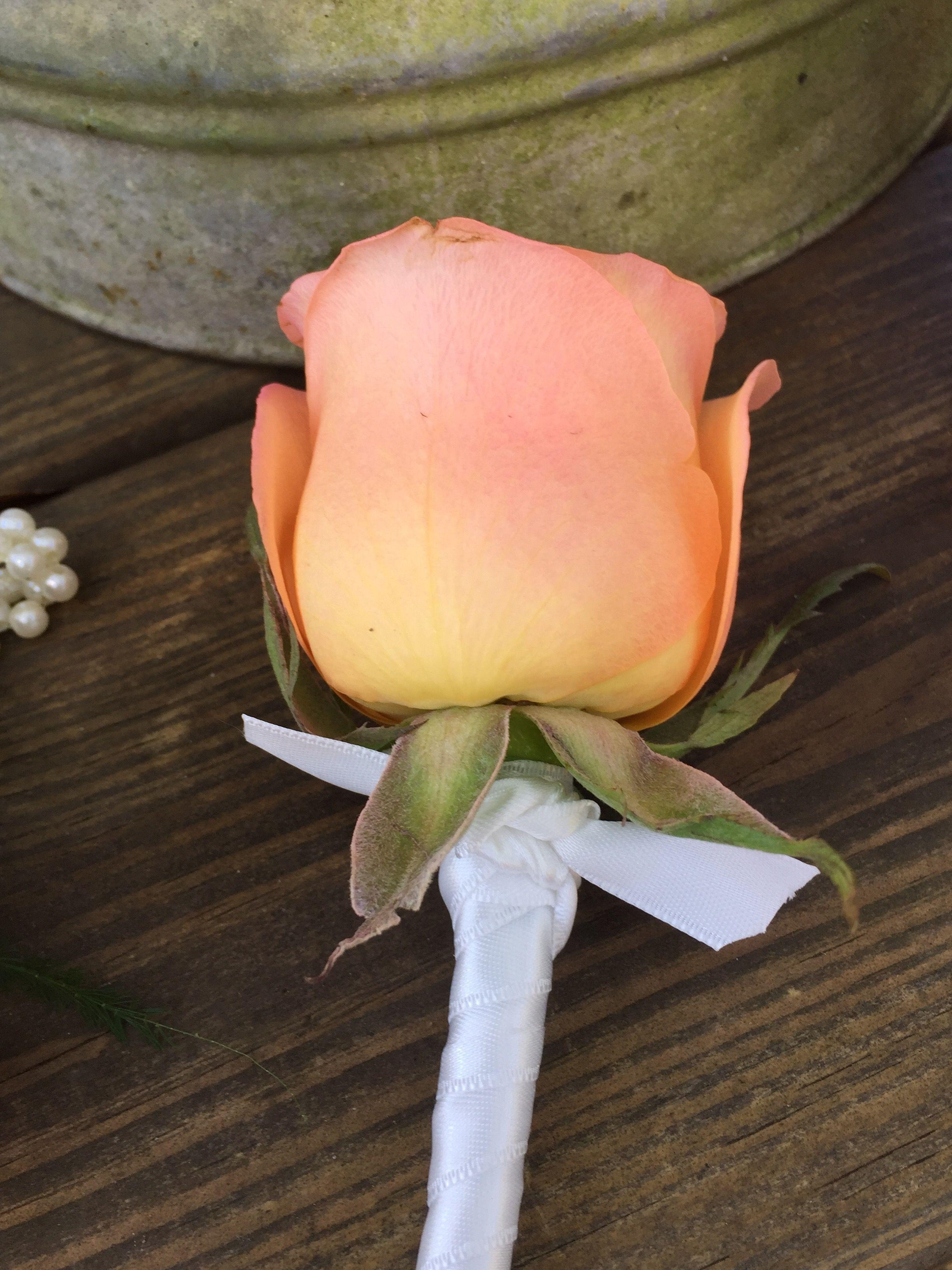 Peach Rose Bout by Alta Fleura