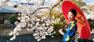 Highlights Japan Journey Culture & Cuisine Adventure